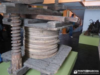 Aceite Cornicabra; Mora; Tembleque; Toledo; viaje cultural;grupo de montaña